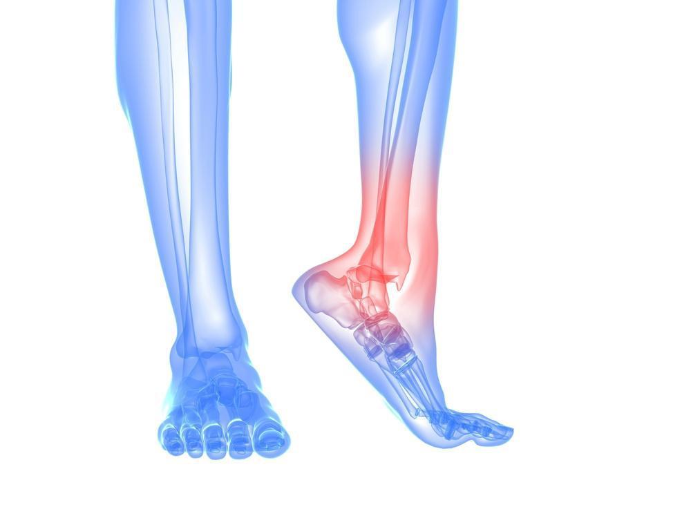 How can stem cells repair tendon injuries?