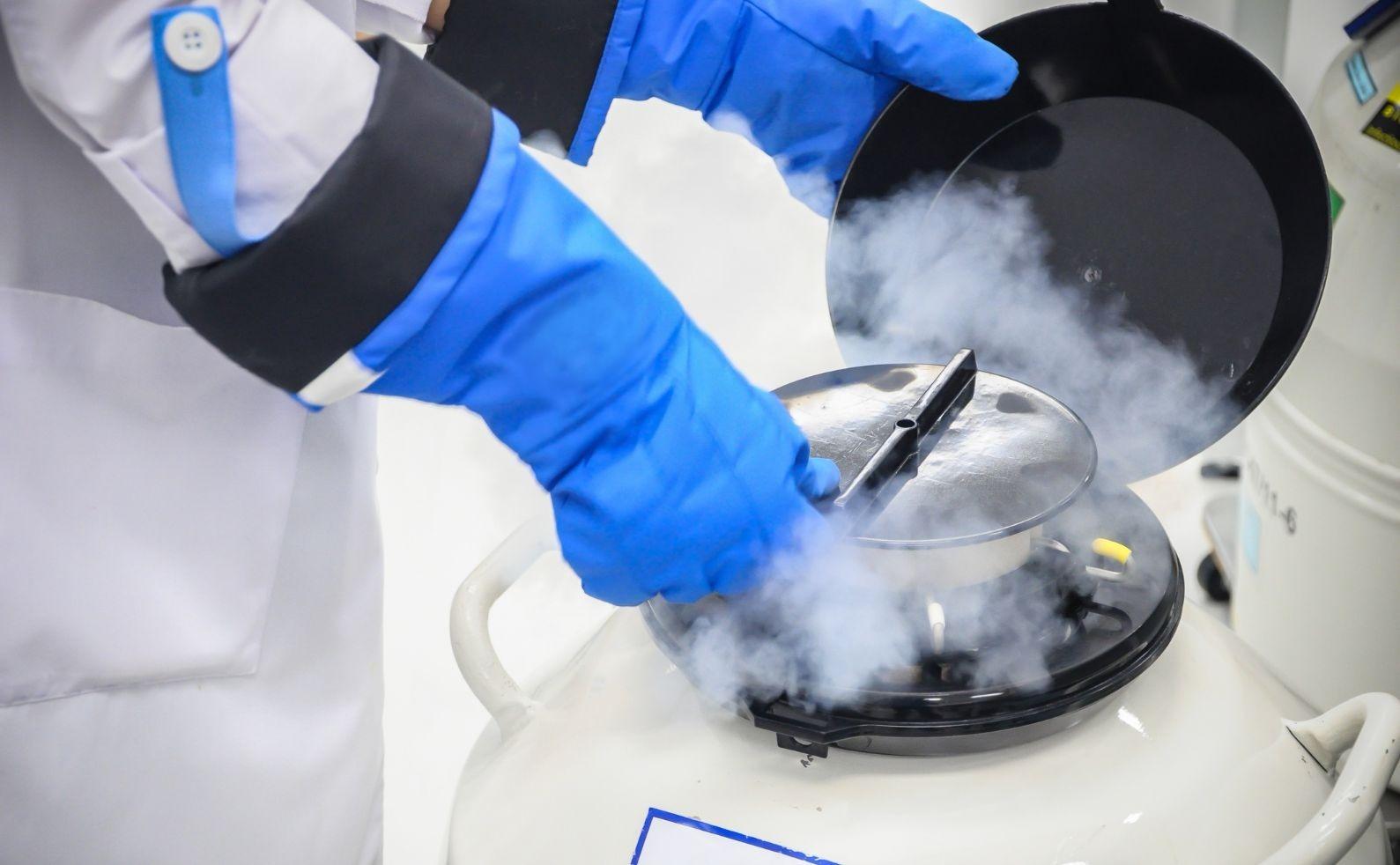 Stem cells storage